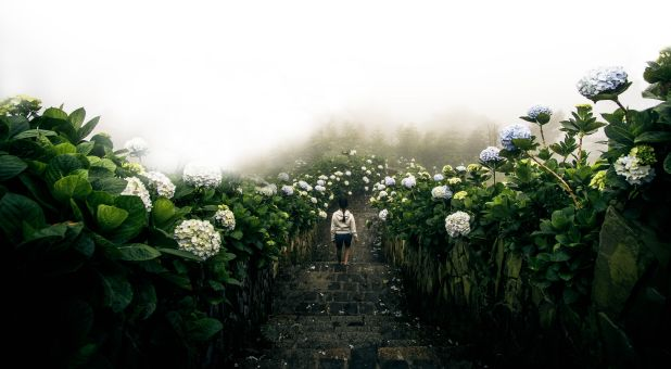 The Garden Within the Temple-A Call To Holy Intimacy