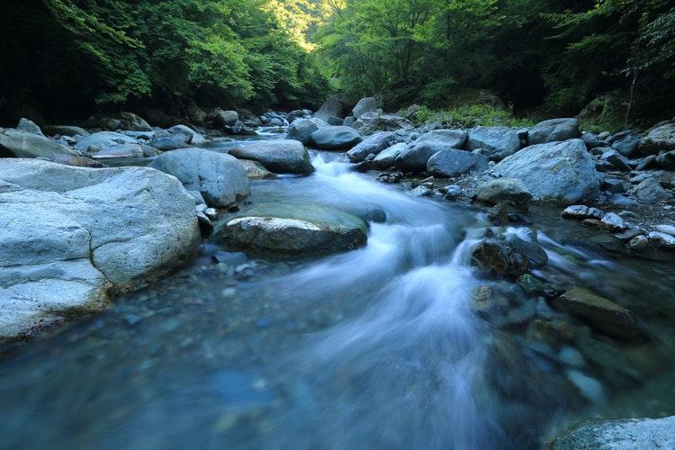 Ezekiel's Encounter Of The Rising River