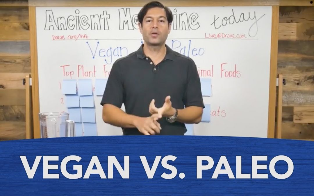 Vegan Vs. Paleo Diet: What's the Best Diet to Follow?