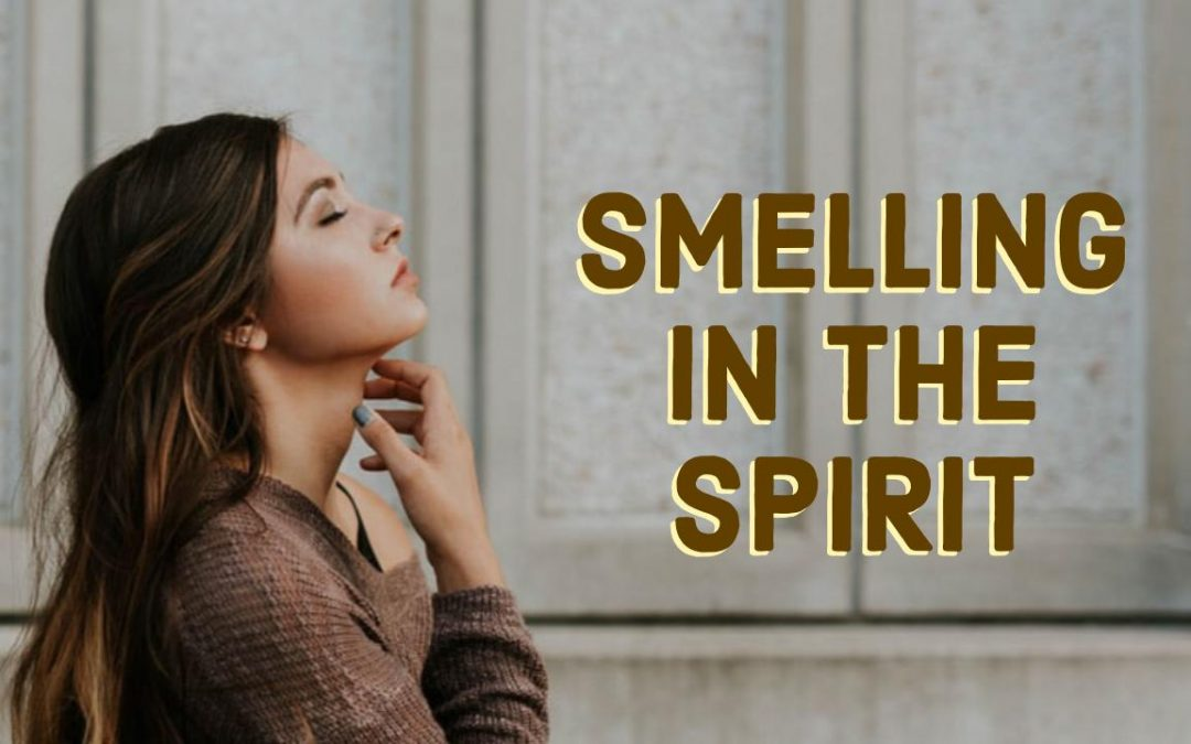 Smelling in the Spirit: School of the Seers