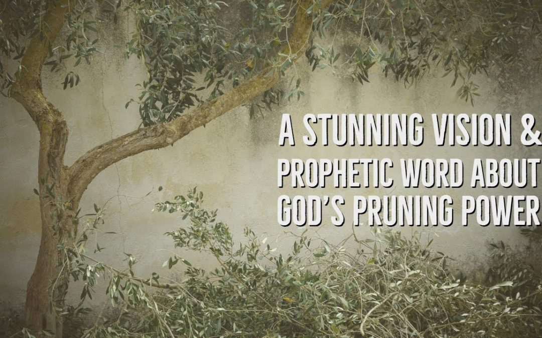 A Prophetic Vision & Word About God's Pruning Power