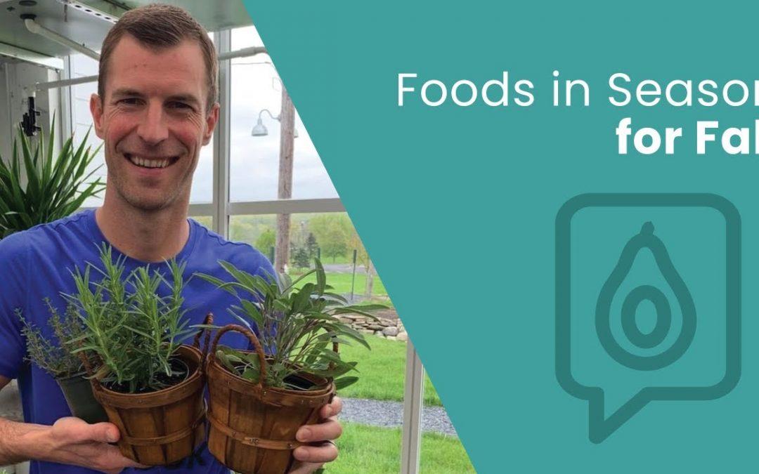 Best Foods in Season for Fall | Dr. Josh Axe