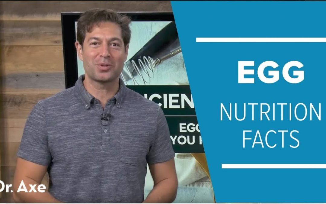 Egg Nutrition Facts: Should You Really Eat the Whole Egg?