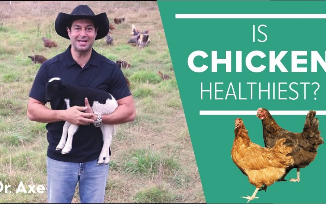 Is Chicken the Healthiest Meat?