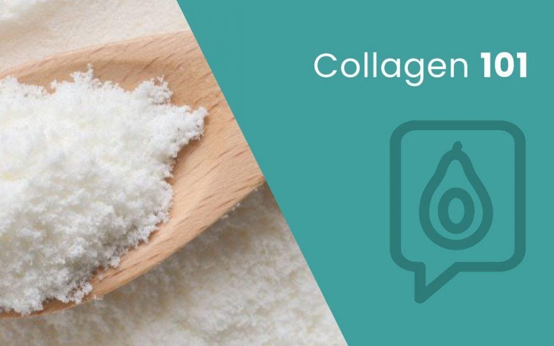 Collagen 101 | Dr. Josh Axe